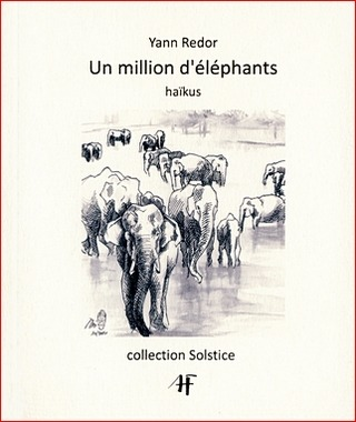 couverture d'Un million d'éléphants